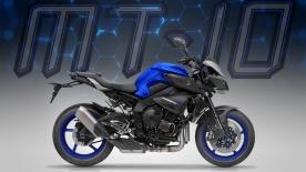 mt-10 blue